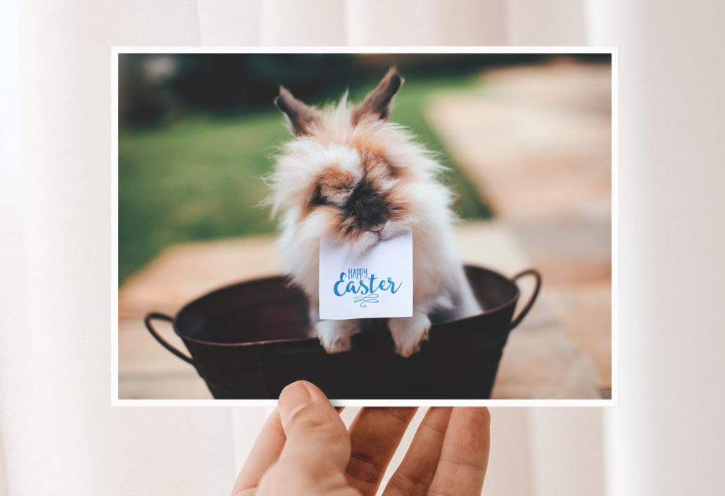 Easter card with a easter bunny as motif