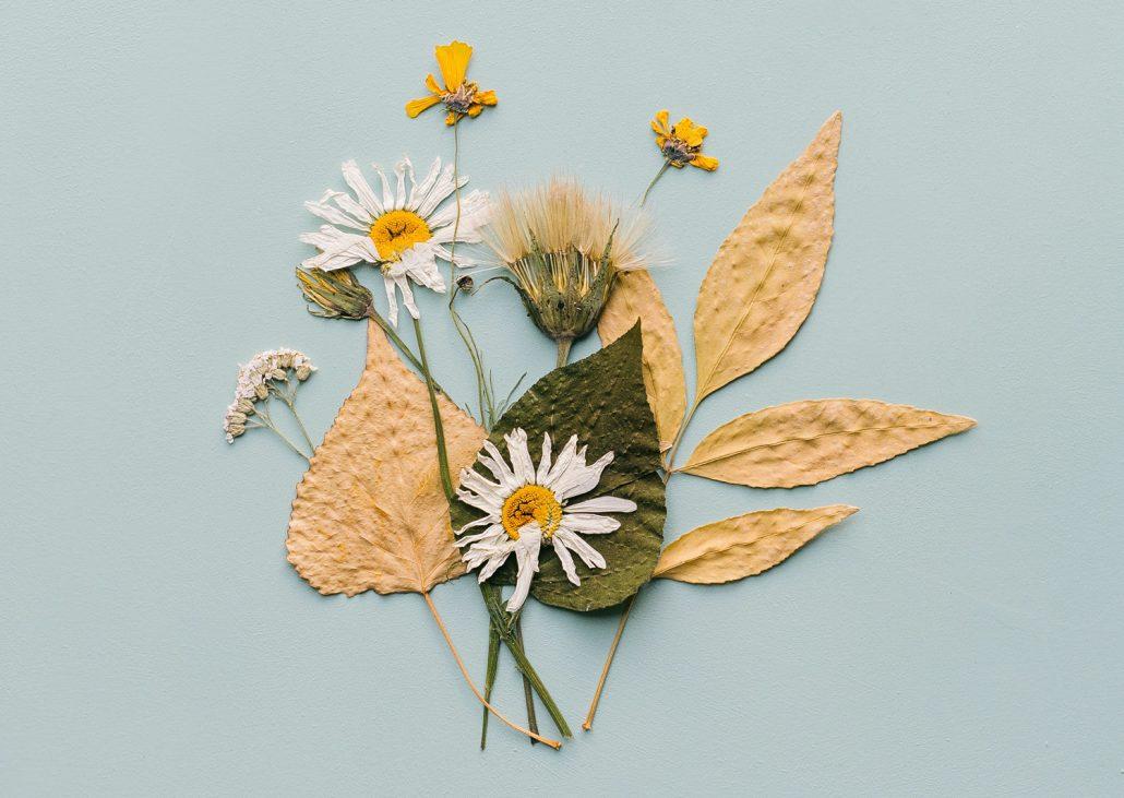 Postkarte mit gepressten Blumen und Blättern